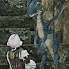 starsboundpath: (dragon ✨ for my goddess)