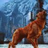 freedom_is_grey: (Liranan howl)