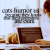 analoguechild: Cat sprawled out behind a laptop in use with the text: Cats humor us because they know that their ancestors ate ours. (Target Team Member)