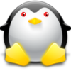 rabidpenguin: (penguin) (Default)