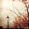 green_dreams: Lamppost and orange-leafed trees against a cloudy sky. (autumn lamppost)