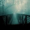 anaraine: Photo of a bridge leading through a cloud of mist. ([photo] through the mist)