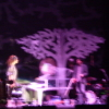 tricksters_queen: A blurry picture taken at an Imogen Heap concert with a tree in the background, but you can't really make out Imogen clearly at all. (Lifeline)