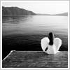featherhearted_girl: A girl in a white dress with dark hair sits on the end of a dock.  She has white wings on her back (wings, stories, fruity_taste)