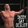 sassygayocelot: (BROTHAAAARRR)