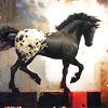 rusticana: (horse)