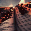 kittydesade: An open book with the top edge smouldering on fire (break my staff burn my book)