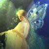 pplfichi: (fairy)