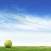 jimihi: (tennis)