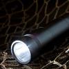 jimihi: (flashlight)