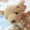 rainydaydeerling: (deer plush)