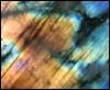 spectrolite: (Default)