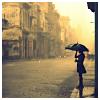 djgray: (singing in the rain)