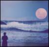 moontosun: (pic#9581796)