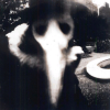 avia: A person in a plague doctor mask (skull mask with a long bird beak), black and white image. (plague doctor)