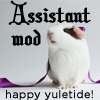 morbane: Guinea pig with a ribbon draped over it. Text - Assistant mod, happy Yuletide (festive)