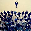 scheadragon: (gathering [crowd])