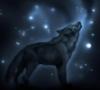 mazzarino: (звёздный волк)