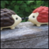 wordsmythe: (hedgehogs)