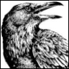 quork: A sketch of a raven, black on white. (Default)
