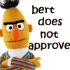 james: bert from sesame street does not approve (bert does not approve)