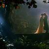 topaz119: (Elessar Evenstar Rivendell)