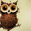 zunzun: ([stock] coffee!owl)