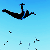 ailurea: icon of nightwing jumping (setting fire to the sky)