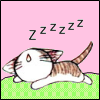 seasnakes: A sleeping cartoon kitten with 'zzzzz' written over its head (zzzzz, sleepy kitty)
