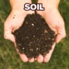 halifaxearthtech: Photo by Panphage from the Wikimedia Commons (Soil)