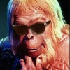 halialkers: Dr Zaius from the 1960s POTA series with sunglasses (Alaravanu)