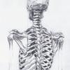 minaal: (Stock: Skeleton)