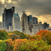 mortalcity: A city skyline over autumn trees. (stock | a sort of fairytale)