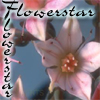 flowerstar: A star-shaped flower (Default)