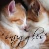 starlit_purple: (kitty: snuggles)
