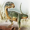 chalicother: chilesaurus diegosuarezi (Chilesaurus)