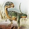 chalicother: chilesaurus diegosuarezi (Chilesaurus)