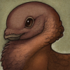 laughingdove: A brown avian creature with a short beak and large dark eyes (Default)