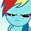coraa: (rainbow dash glare)
