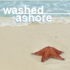 "syntaxofthings: A seastar on the beach with the words ""Washed ashore"" ([other] Washed ashore)"