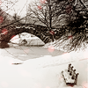 em_kellesvig: Bridge over frozen stream with snow and a bench (Winter)