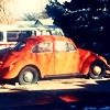 vane_nt: An outdoor photo of a reddish, orange-ish car (Car) (Default)