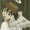 charcoalfeather: (My wings?)