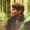grimmfaced: (grimm - in the woods)
