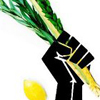 "kerrypolka: The ""solidarity"" clenched fist logo Photoshopped to be holding a lulav. (judaism: occupy Sukkot)"