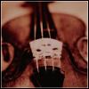 phoenix64: violin, closeup of bridge (violin)