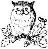 ext_960074: (CopperJet Owl)