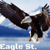eaglest: flying water eagle (flying water eagle)