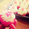 deumion: a person's hand holding a pink cupcake up from a tray of similar ones. (fingering~)