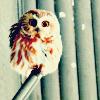 rikke_leonhart: Owl (Arashi - Ohno Monster)